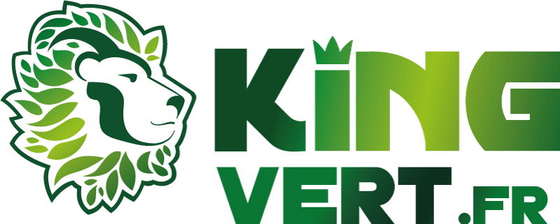 Logo KingVert